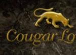 Cougar Frauen suchen